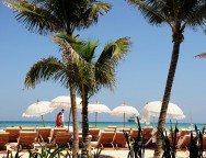 beach-club-2