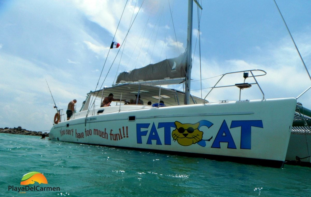 Fat cat boat on sea