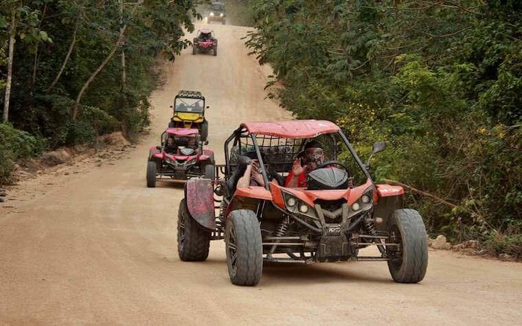 Jungle Buggy Tour