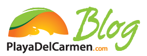 Playa Del Carmen Blog - News, Reviews & Fun Things to Do