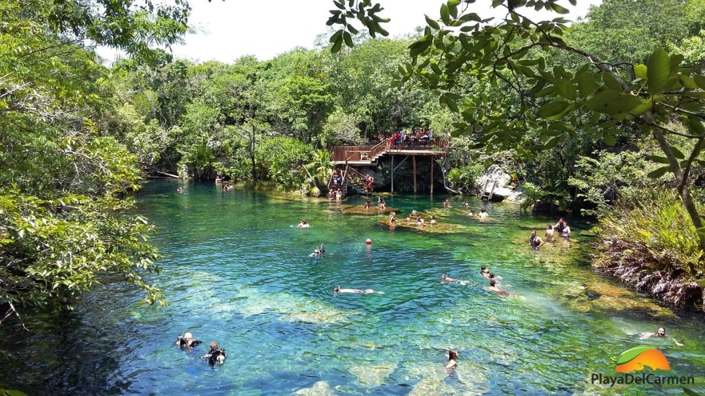 Jardin del eden cenote review playa del carmen blog for El jardin del eden montornes