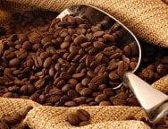 coffee beans-min