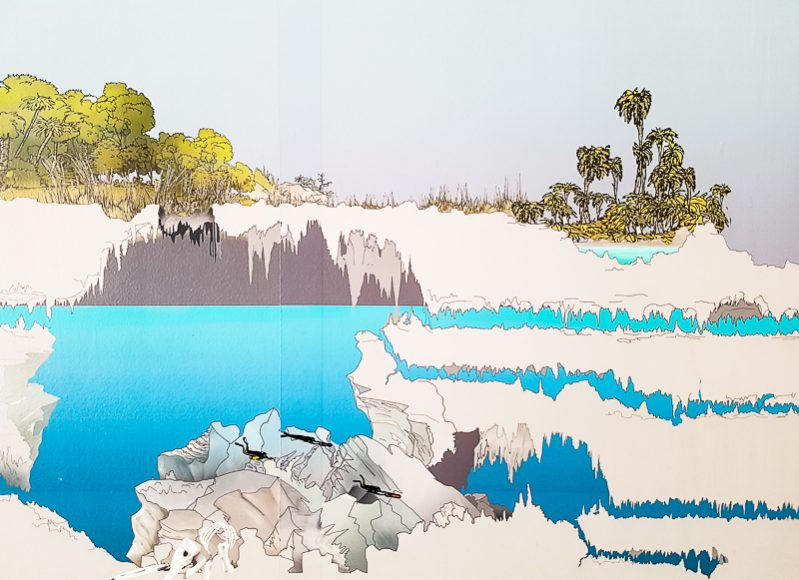 Underwater rivers in the Riviera Maya