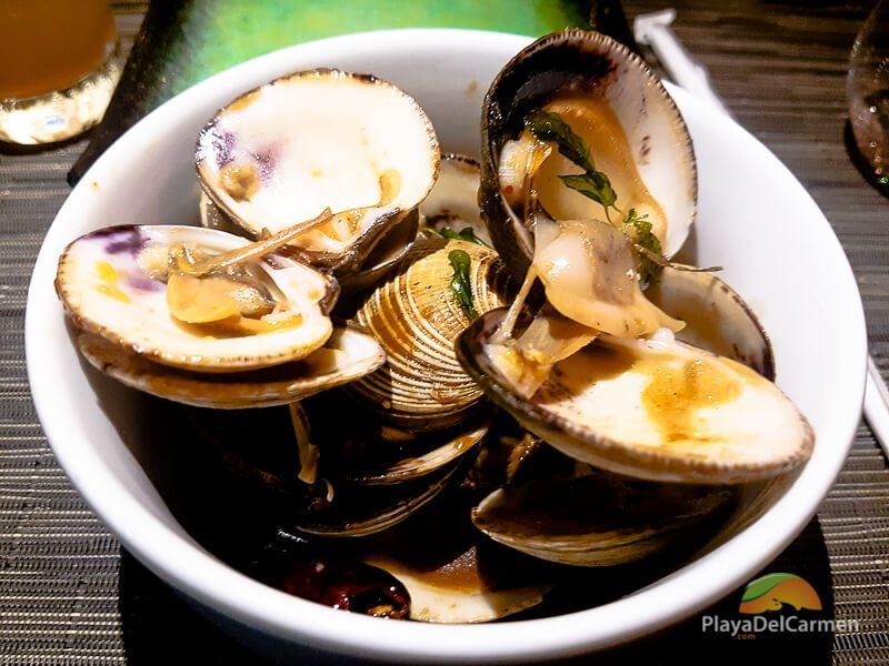 stir fried clams at koh thai restaurant