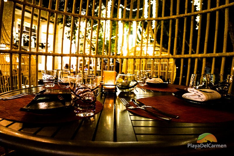 Entrées at koh thai restaurant