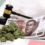 Legal Weed in Mexico by 2021? Everything You Need to Know
