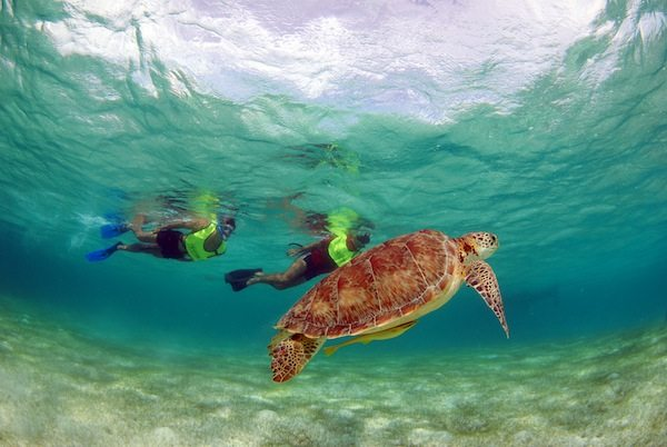 snorkel-xtreme-fun