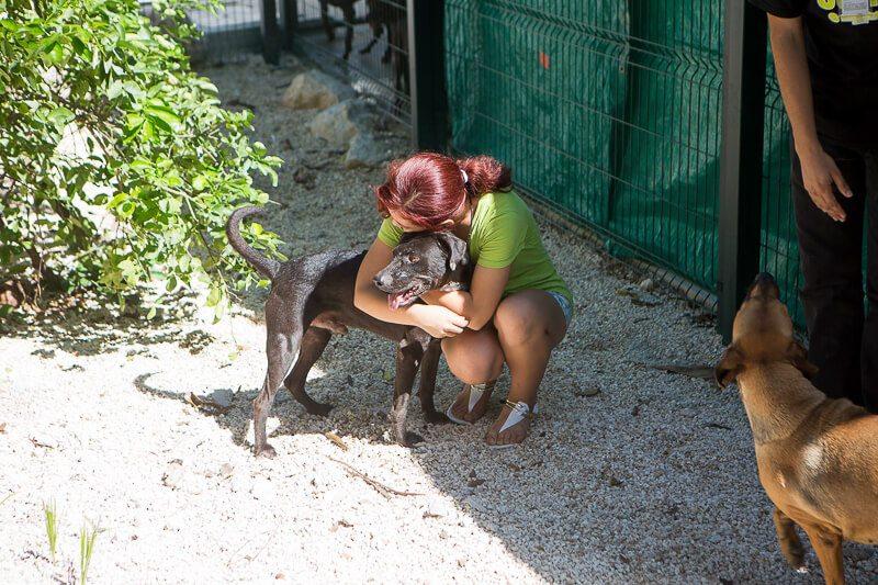 Person hugging a dog at S.O.S. dog shelter Playa del Carmen
