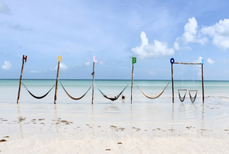Isla Holbox day tour from the Riviera Maya and Playa del Carmen